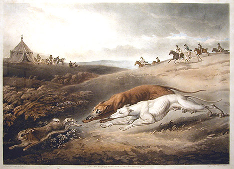 Greyhounds Coursing A Rabbit, by John Atkinson