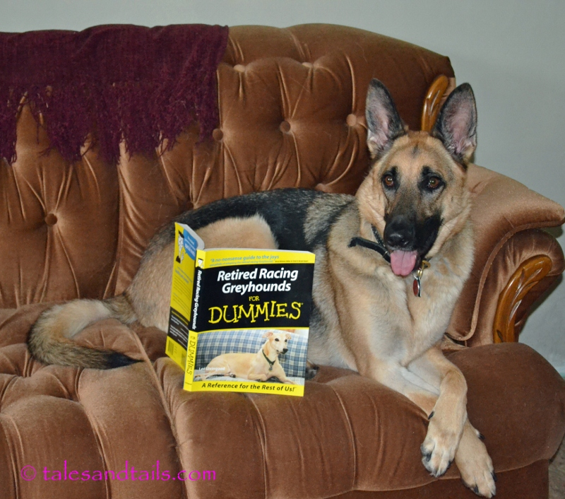 Research for German Shepherds -- Tales and Tails