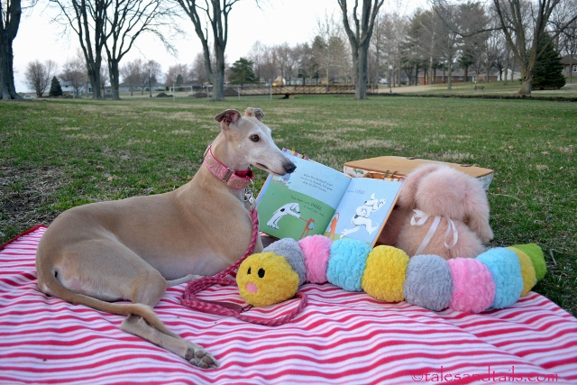 A Story in the Park -- Tales and Tails