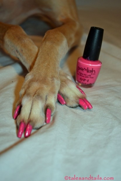 Pink Pedicure -- Tales