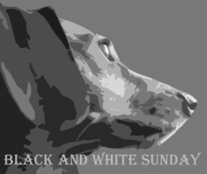 Black and White Sunday Badge