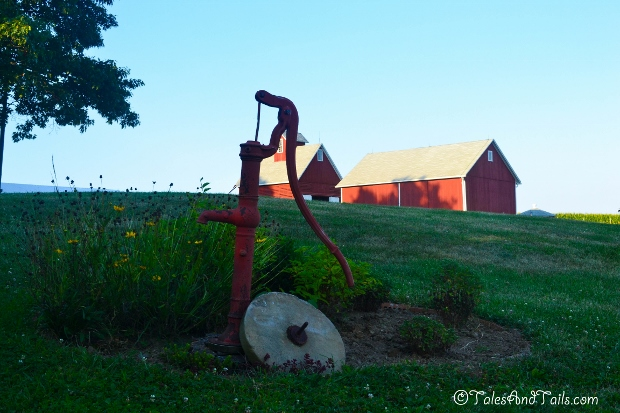 Old Water Pump -- Tales and Tails