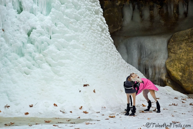 Ice Castle For A Princess -- Tales and Tails
