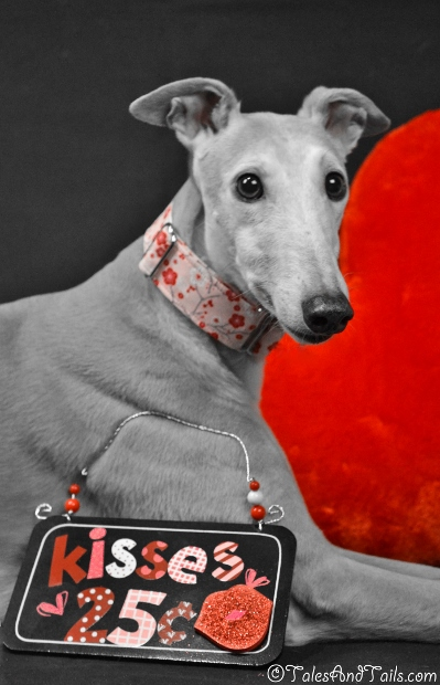 Kisses For Sale -- Tales and Tails