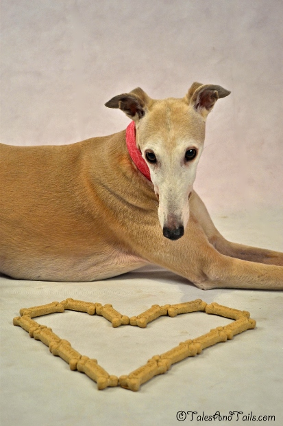 Milk Bone Love -- Tales and Tails #MilkBoneLove