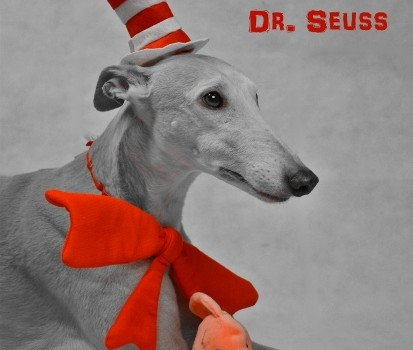 Sweetly Seussical -- Tales and Tails