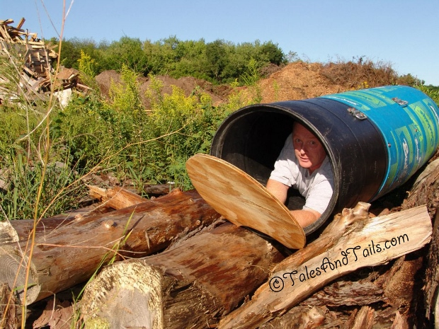 In the Bark Barrel -- Tales and Tails