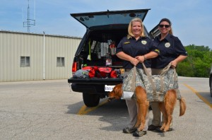 New K-9 Stretcher --TalesAndTails.com