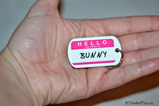 Hello My Name Is Bunny -- Tales and Tails