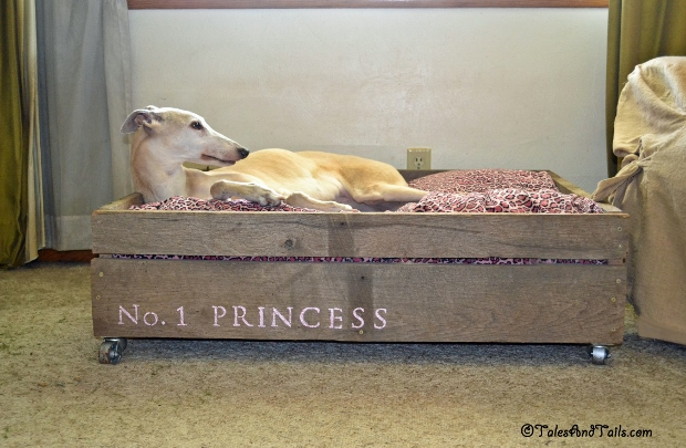 No. 1 Princess -- Tales and Tails