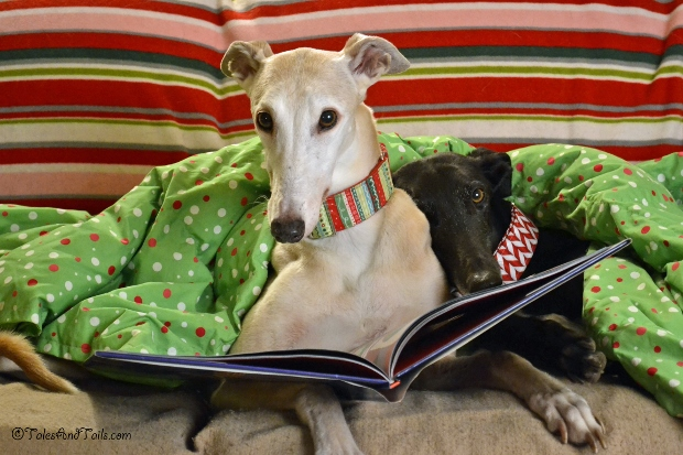 'Twas The Night Before Christmas -- Tales and Tails
