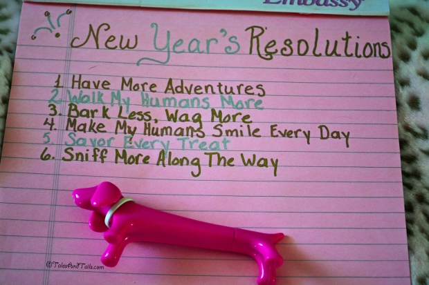 Bunny's Resolutions -- Tales and Tails
