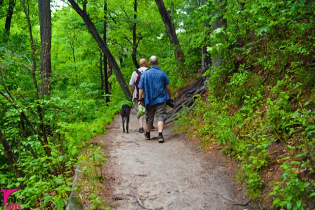On The Trail -- Tales and Tails
