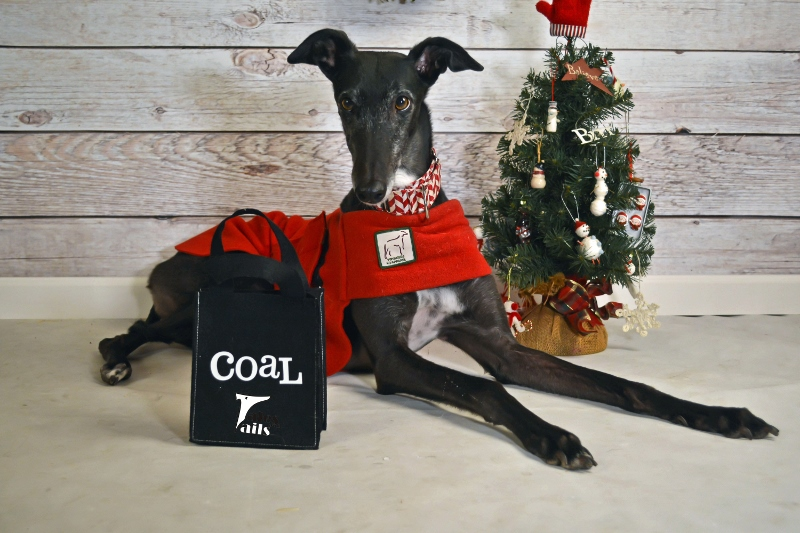 Coal For Christmas -- Tales and Tails