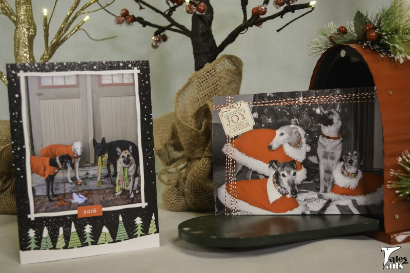 Christmas Cards -- Tales and Tails
