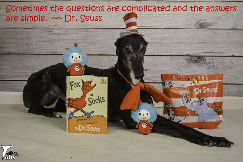 Sometimes The Questions Are Complicated -- Tales and Tails