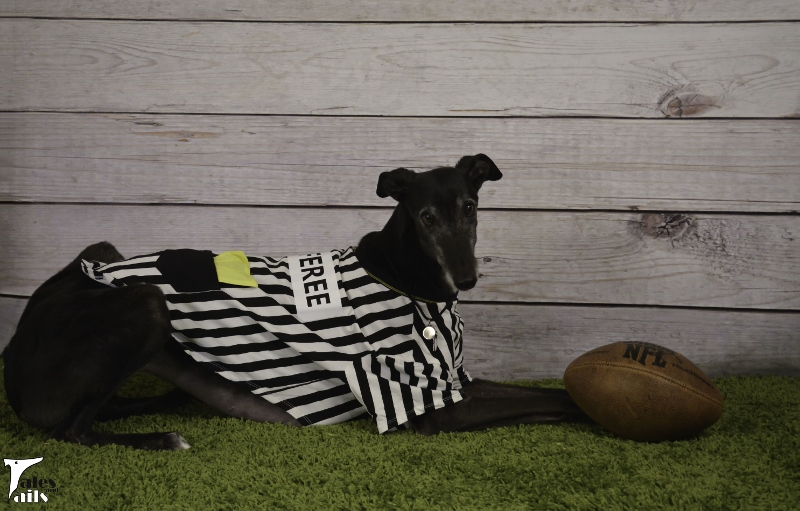 The Rufferee -- Tales and Tails