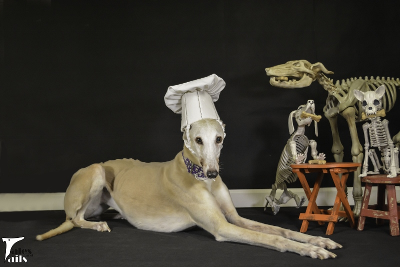 Bone Appetit -- Tales and Tails