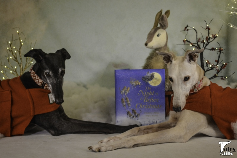 There Ought To Be Greyhounds -- Tales and Tails