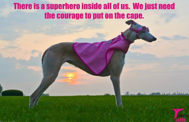 Have The Courage To Put On Your Cape -- Tales and Tails