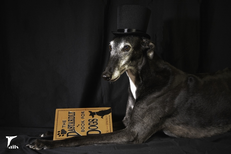 A Little Dark And Dastardly -- Tales and Tails